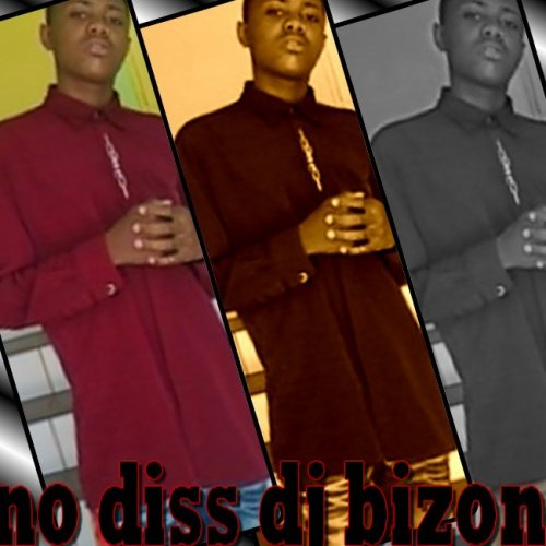 no diss dj -bizon