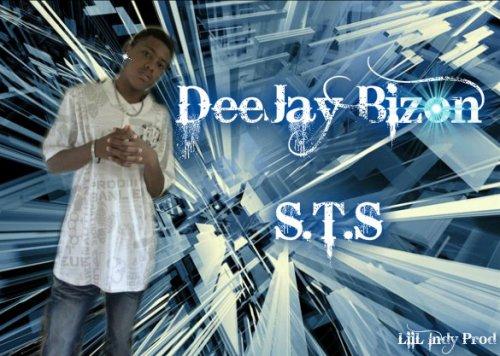 djay_bizon [ S.T.S] choo mm