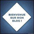 Soyez les Bienvenus sur mon Blog!