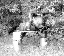 ∞ On a tendance , de nos jours , à oublier que l'équitation est un art. Or l'art n'existe pas sans amour. L'art, c'est la sublimation de la technique par l'amour. ღ