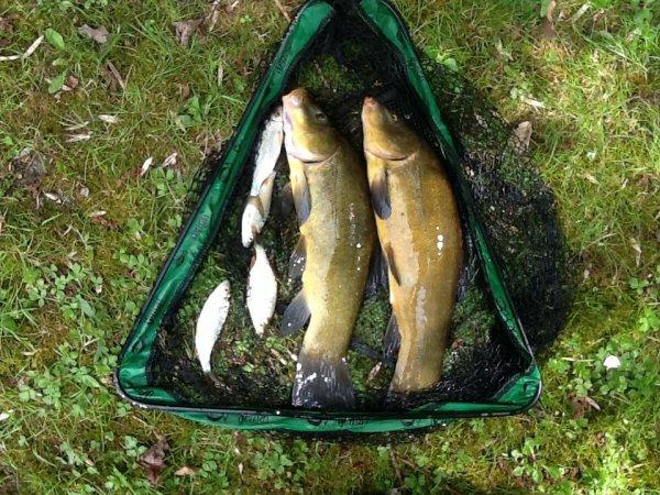 Pêche pas terrible!