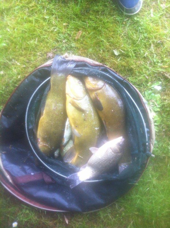 La pêche de Vianney!