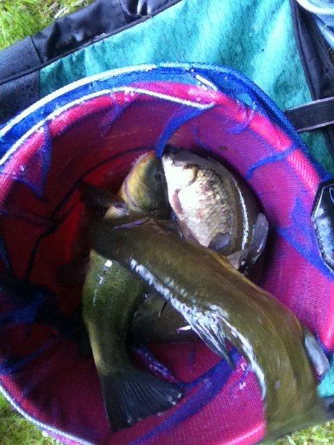 Pêche courte durée