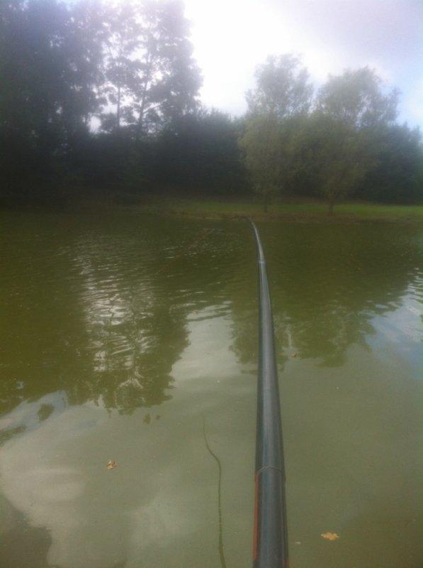 Pêche au bord
