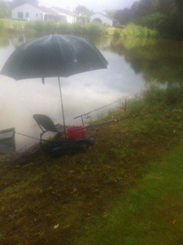 Petite pêche feeder