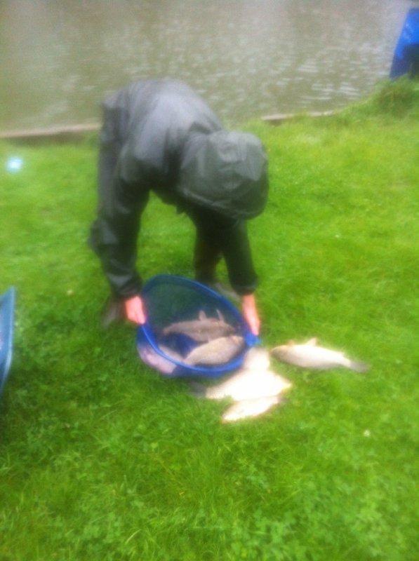 Pêche de carassins