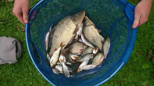 Pêche en étang!