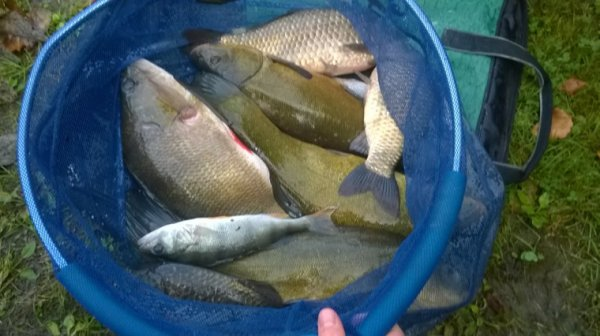 Pêche au gros!