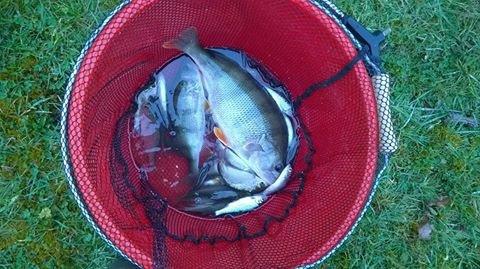 1h de pêche