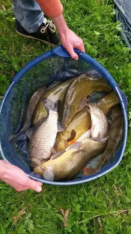Jolie pêche