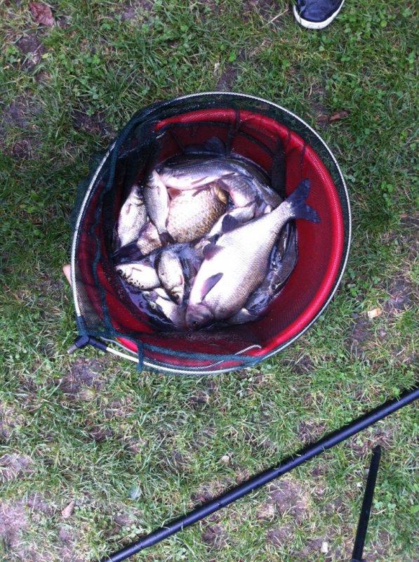 Pêche au blanc