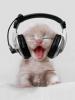 vas-y dj cat fait péter le son !!!! ;)