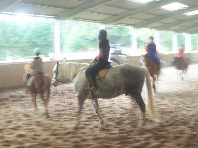 fête du cheval 2011