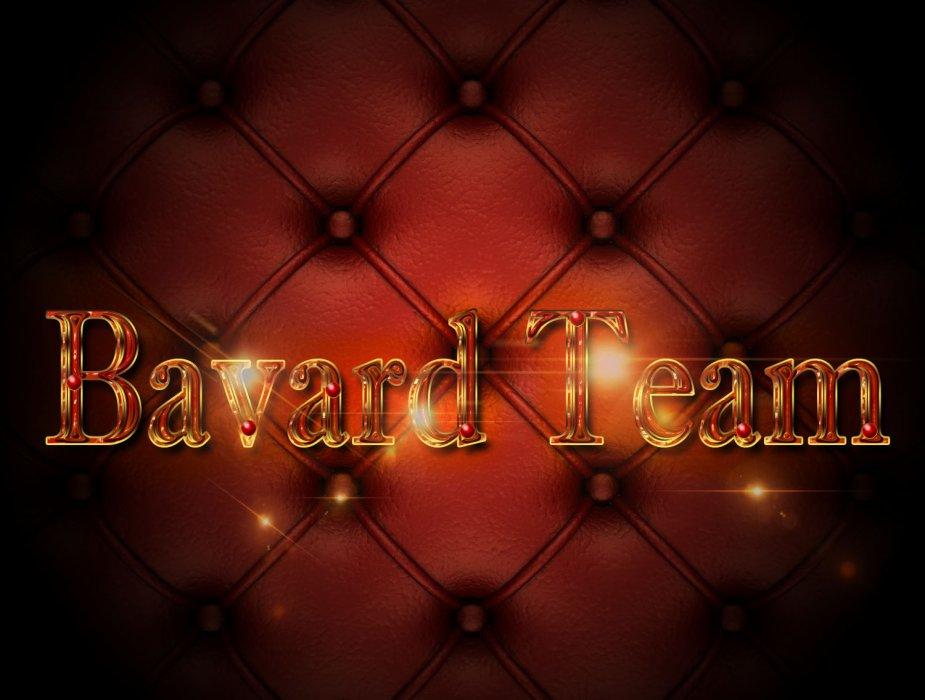 Bavard Team