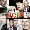 Goodbye Abby (NCIS 15)