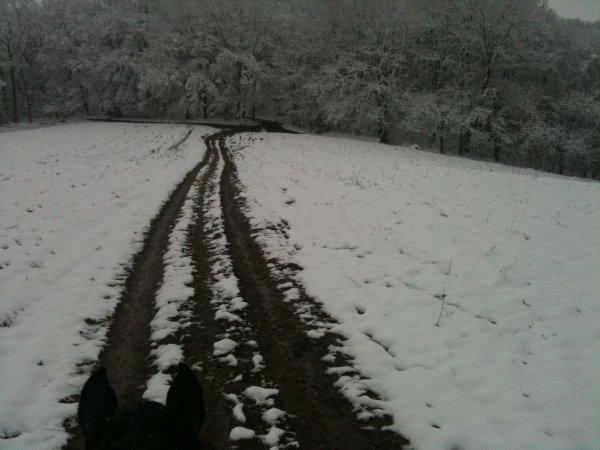 Grandioso sous la neige