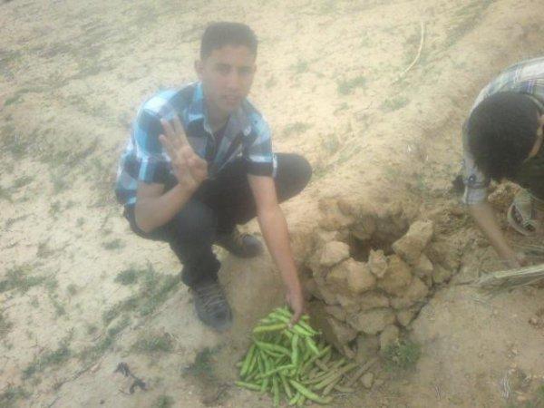 c'est moi et mohamid on prépare le four des haricots