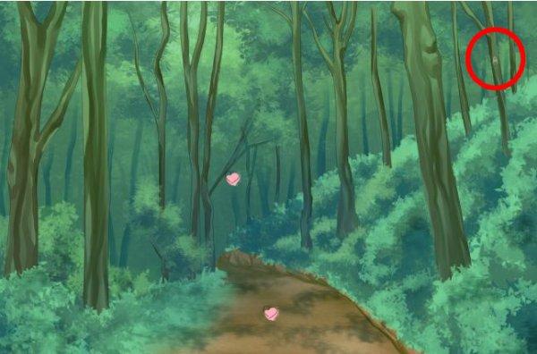 Amour sucré episode 11 ou trouver l insecte
