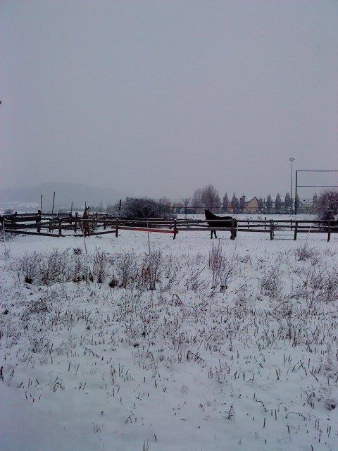Youpi la neige !!!