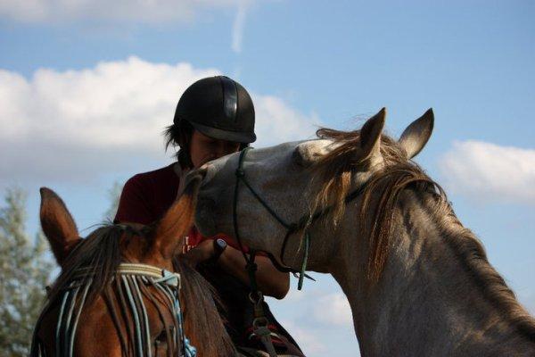 La prière du cheval ♥ ♥ ♥