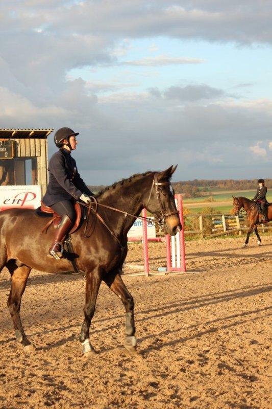 Concours Hunter à Réméréville le 30-10-2011