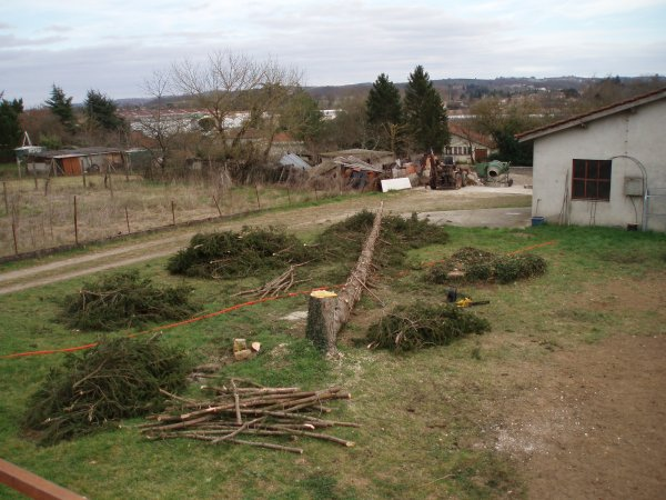 Avril 2008: Début des travaux : Préparation du terrain .Eh oui désolé mais il faut faire  un choix.