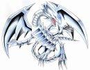 Photo de les-dragons-blancs-77
