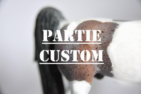Partie Custom