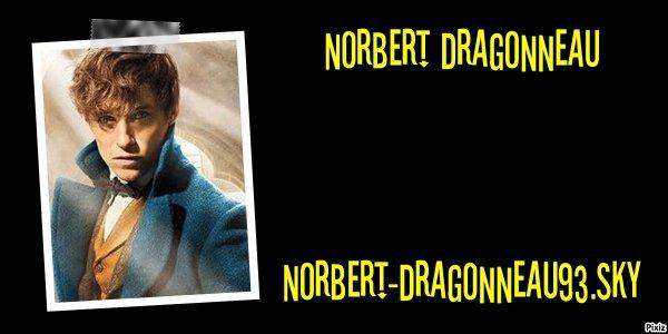 Norbert Dragonneau
