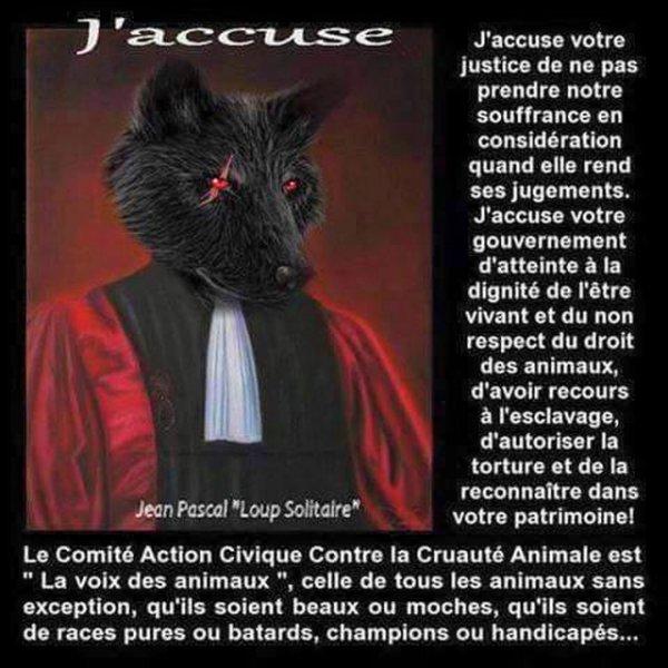 J'accuse ...