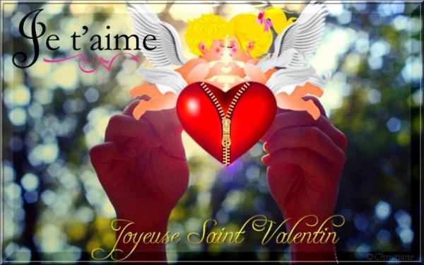 Joyeuse fête de la St Valentin