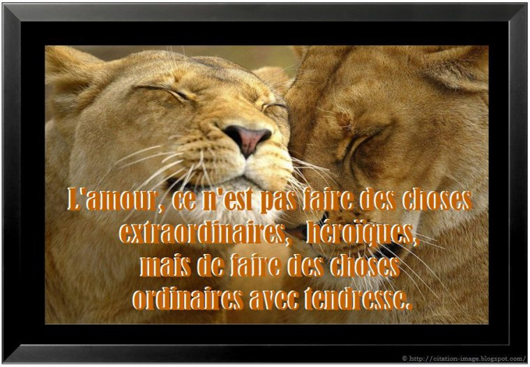 """BELLES CITATIONS"""