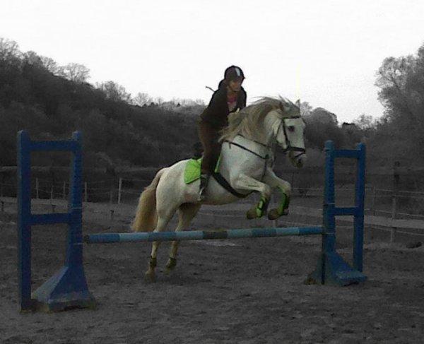 Mon amour De cheval <3