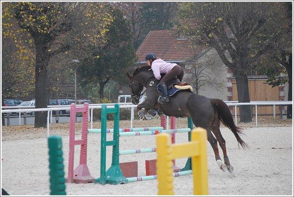 - Concours ( Championnats de France Indoor / La Houssaye en Brie) -