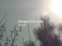 Unknown / Morgan Van Dam - Trickle (2010)