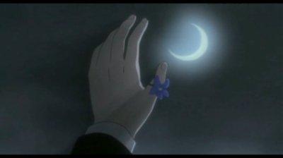 Ma fleur bleue...