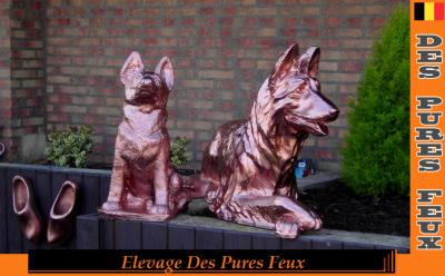 Statues Des Pures Feux   www.chenildespuresfeux.com