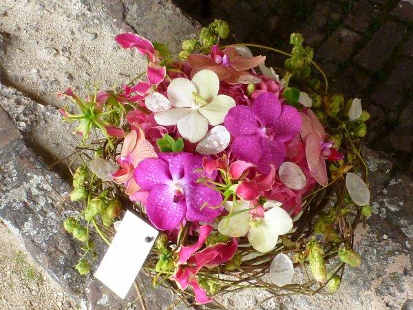 Une autre série de photos et l l orchidée à l honneur (Alden Bielsen)
