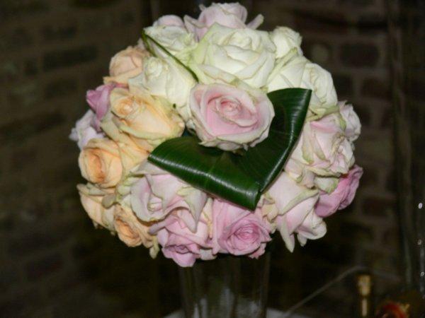 Et la dernière série de photos avec la rose la reine éternelle des fleurs (Alden Bielsen)