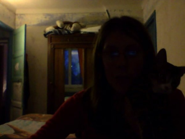 ce moi avec mon chat jerry