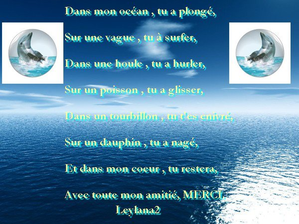 (l)(l)(l)(l) Les Dauphins (l)(l)(l)(l)