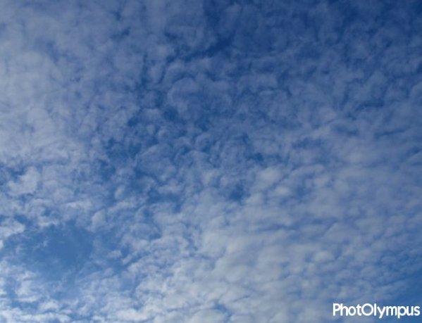 # Le monde aurait pu être simple comme le ciel et la mer.
