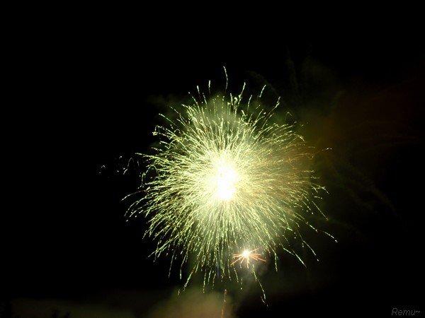 - Firework -