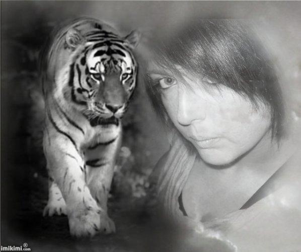 moi et les tigres!!!