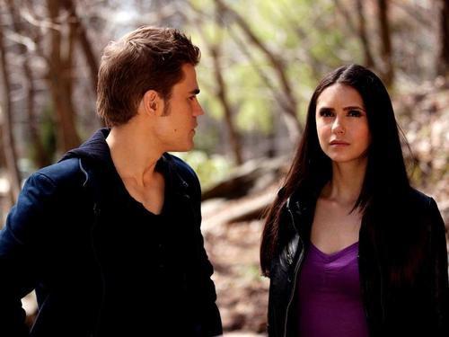 """"""" Ce sont nos valeurs ainsi que nos actes qui définissent ce qu'on est."""" - Stefen, The Vampire Diaries"""