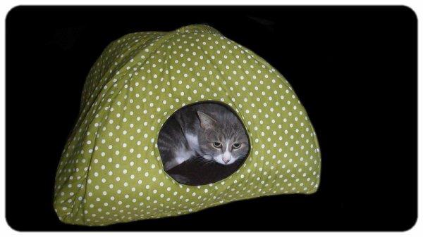Améliorez le sommeil de vos chats et chiens!