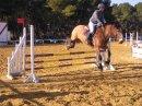 Photo de Materiel-Equitation13