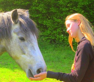 Si un jour on tombe mon cheval & moi , relevez d'abord mon cheval , si il ne se relève pas , laissez moi , si il ne répond plus cela ne sert plus a rien de me relevez il seras trop tard [..]