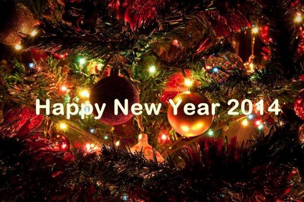 bonne année 2014 happy new year