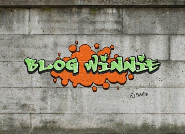 Blog de winnie